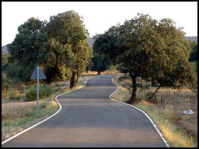 A Spanish country road.