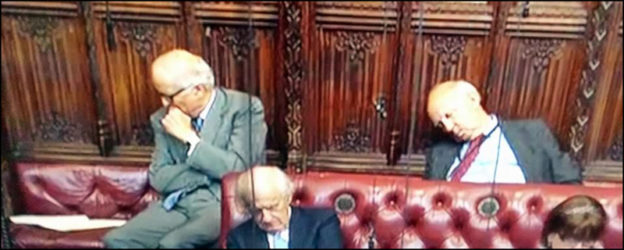Lords, peers, House of Lords, politics, DriveWrite Automotive, motoring, cars, blog