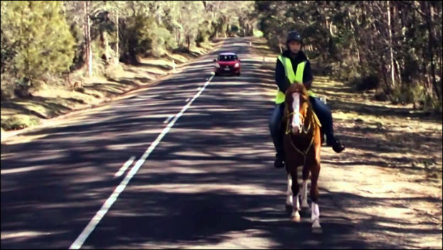 horse, horse rifer, riding horses on road, road safety, DriveWrite Automotive, motoring blog, car blog
